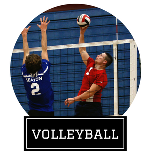 Click here to explore our volleyball equipment